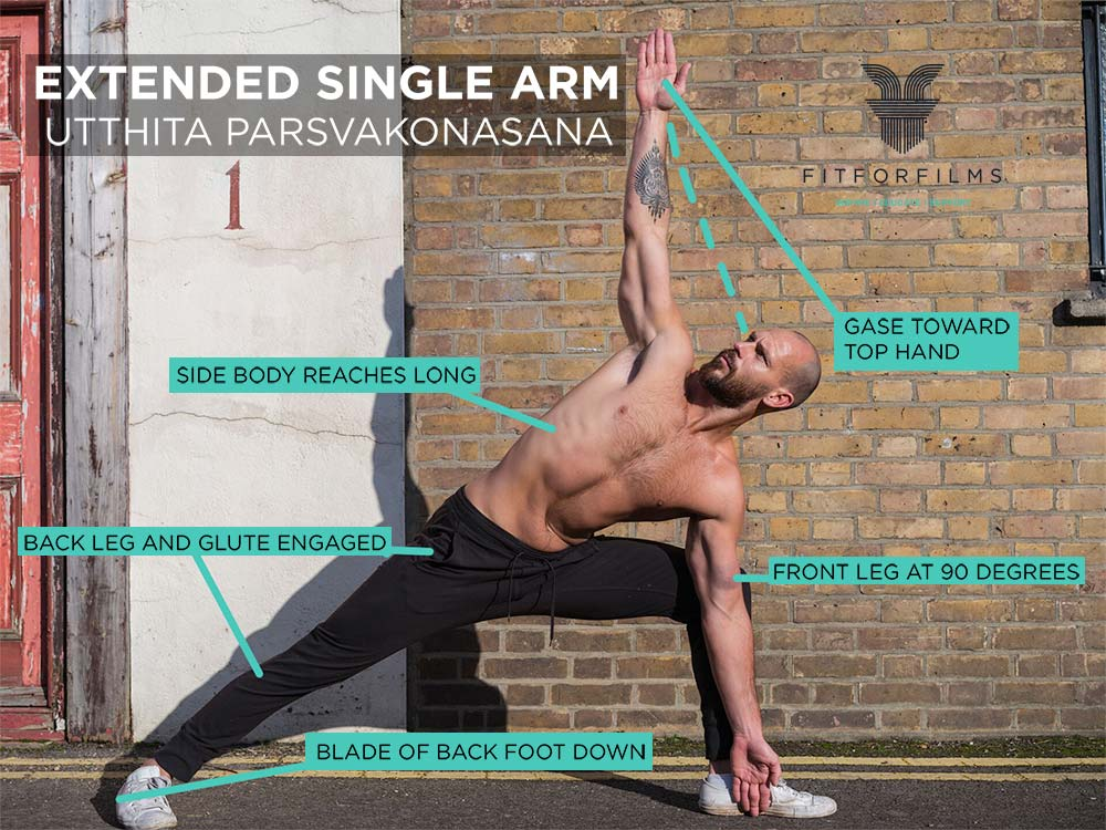 extended single arm image