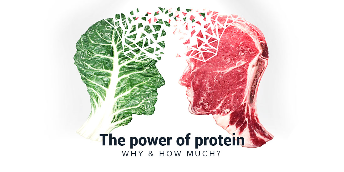 Home Protein Importance1