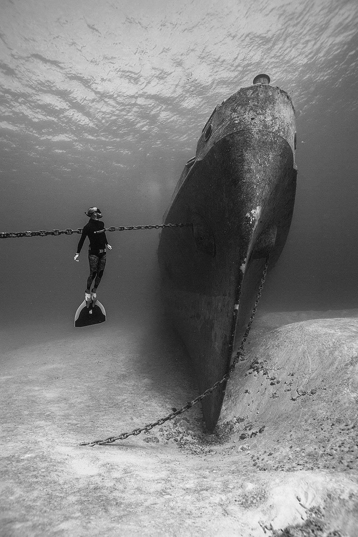 mark tilley freediving image