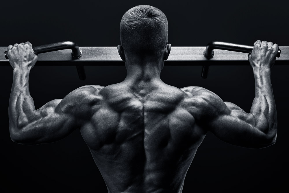 Mastering The Compounds Part 4: The Pull Up