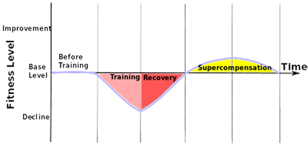 periodisation graph image
