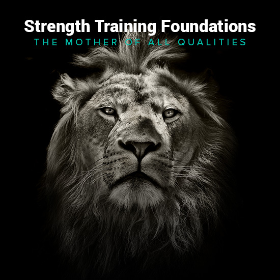Strength Training Foundations1